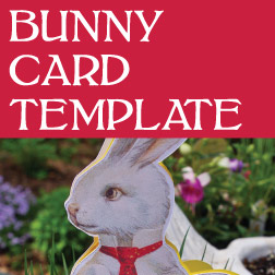 button_bunnycardtemplate