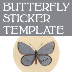 button_butterflysticker