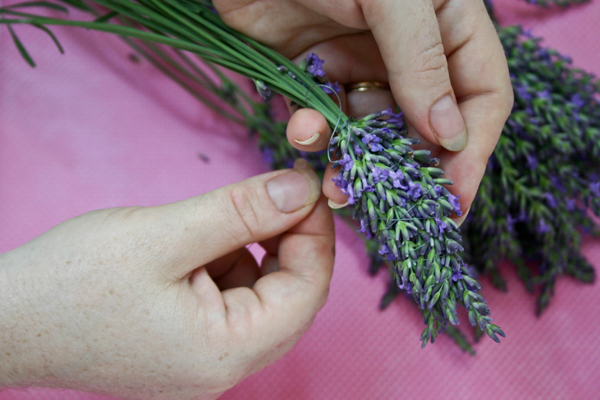 bring the thread up the flower section of the lavender